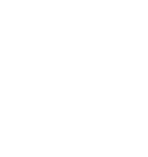SRG - Sinergia Racing Group